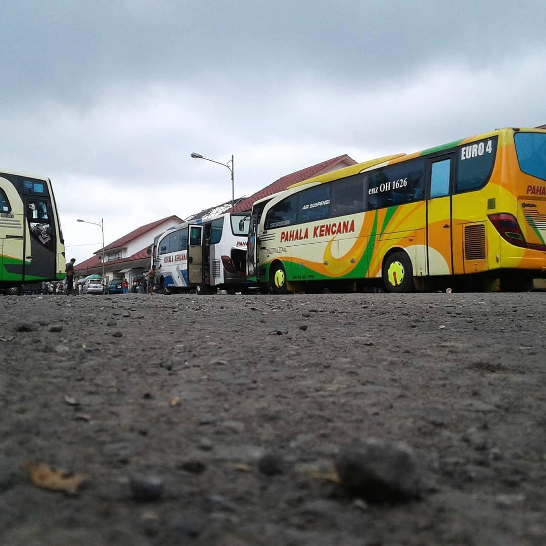 Micro bus dari wonosobo ke dieng